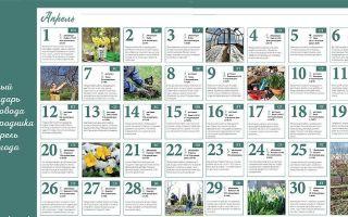 Лунный посевной календарь огородника на апрель 2019 года