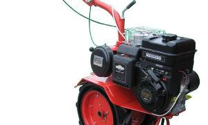 Мотоблок Салют 5 БС-1. Обзор, характеристики, отзывы