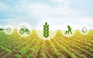 Сельскохозяйственный интернет-портал для продажи и закупки продукции