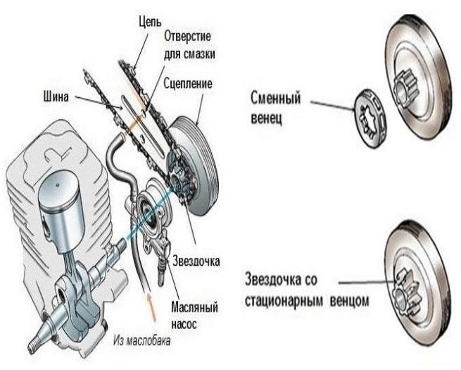 Устройство системы сцепления бензопилы