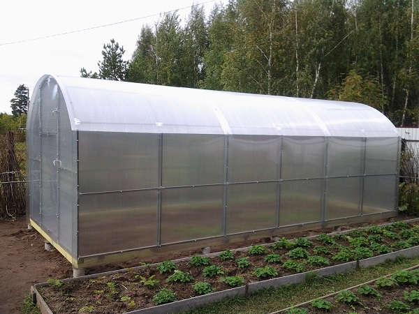 Теплицы из поликарбоната для защиты и роста урожайности